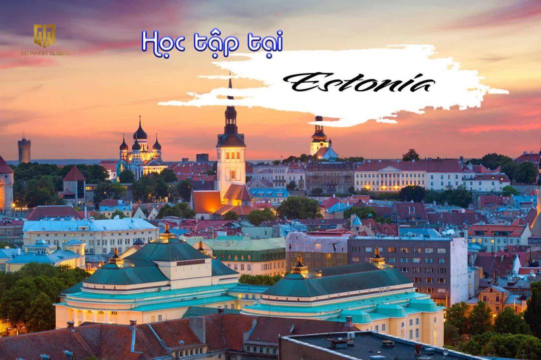hoc-tap-tai-estonia-gig-viet-nam