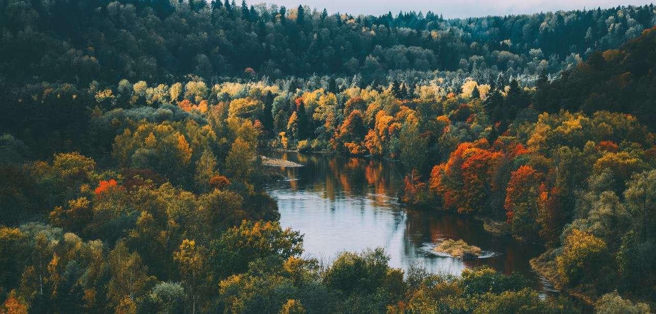 gig-viet-nam-autumn-sigulda-latvia-travel-dinh-cu-quoc-te