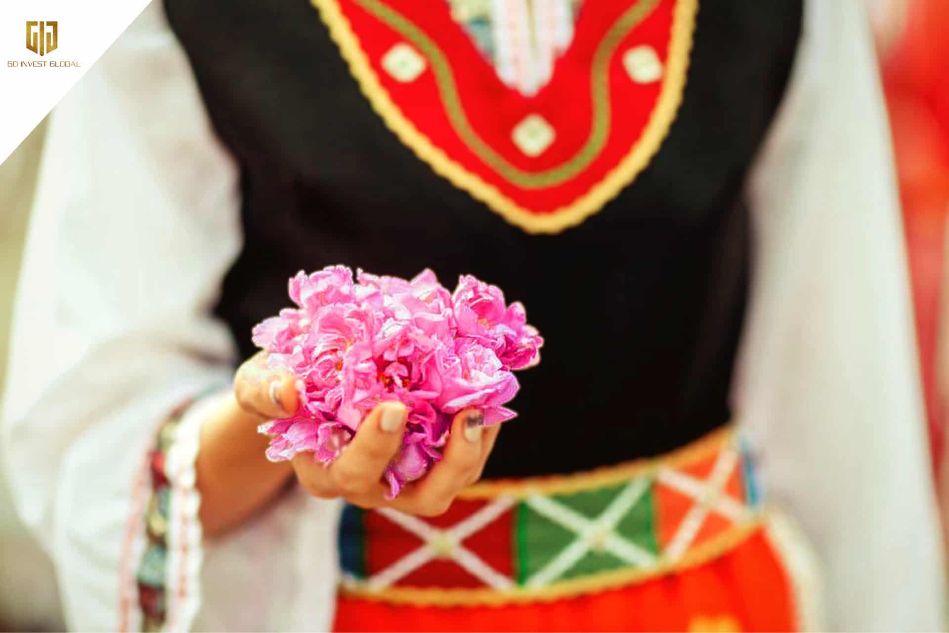 Lễ hội hoa hồng ở Agros